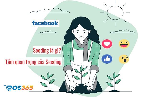 Seeding là gì? Seeding Facebook là gì? Cách áp dụng hiệu quả