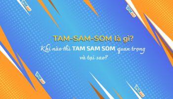 TAM SAM SOM là gì? Khi nào TAM SAM SOM quan trọng và tại sao?