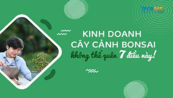 Kinh doanh cây cảnh Bonsai không thể thiếu 7 điều này