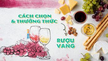 Cách chọn và thưởng thức rượu vang đúng chuẩn